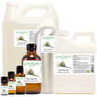 Tea Tree Essential Oil 100% Pure Many Sizes Free Shipping