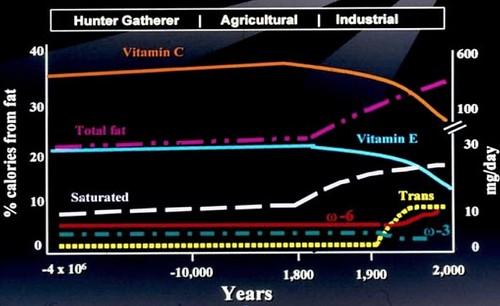 corn fat acid grain fatty diet artemis sgi evolutionary... (Photo: jurvetson on Flickr)